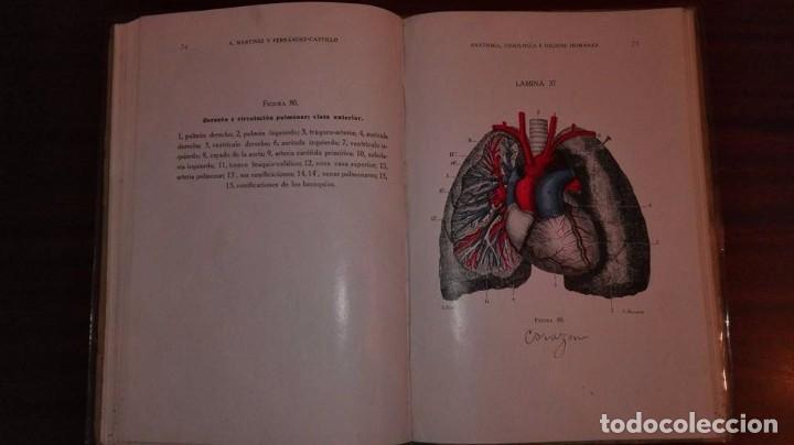 anatomía, fisionomía e higiene humanas. atlas. - Comprar Libros ...