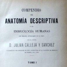 Libros antiguos: COMPENDIO DE ANATOMÍA DESCRIPTIVA Y DE EMBRIOLOGÍA HUMANAS CON GRABADOS INTERCALADOS EN EL TEXTO - J. Lote 88995704
