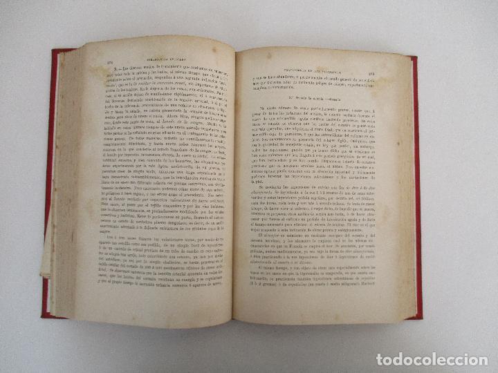 Libros antiguos: Tratado de Terapéutica Aplicada - Alberto Robin - José Espasa Editor - 8 Tomos - Completa - Año 1886 - Foto 47 - 206259152