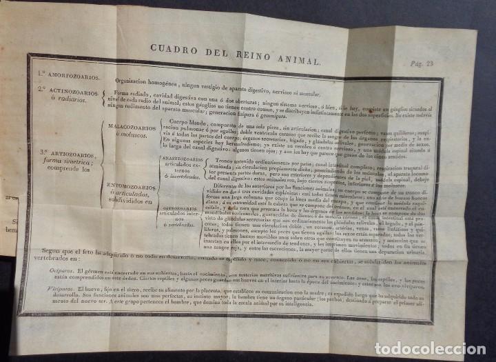 Libros antiguos: 1831 MANUAL DE LA FISIOLOGIA DEL HOMBRE - HUTIN - MEDICINA - psicologia - Foto 11 - 90981615