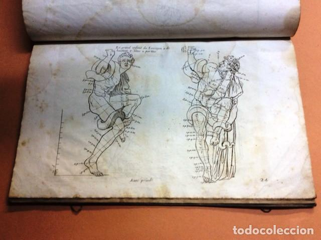 Libros antiguos: LES PROPORTIONS du CORPS HUMAIN - Foto 4 - 91296755