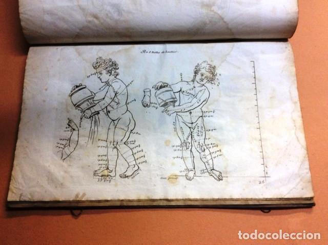 Libros antiguos: LES PROPORTIONS du CORPS HUMAIN - Foto 5 - 91296755
