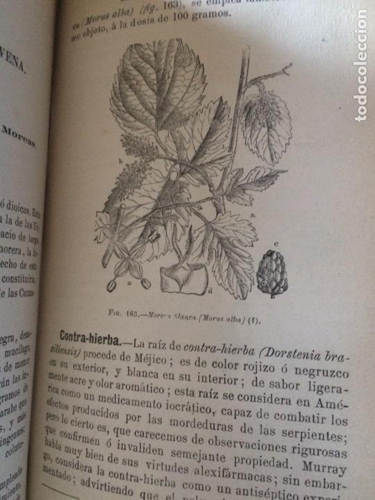 Libros antiguos: Tratado de la materia medica Dr.J.B Fonssagrives - Foto 16 - 92862268