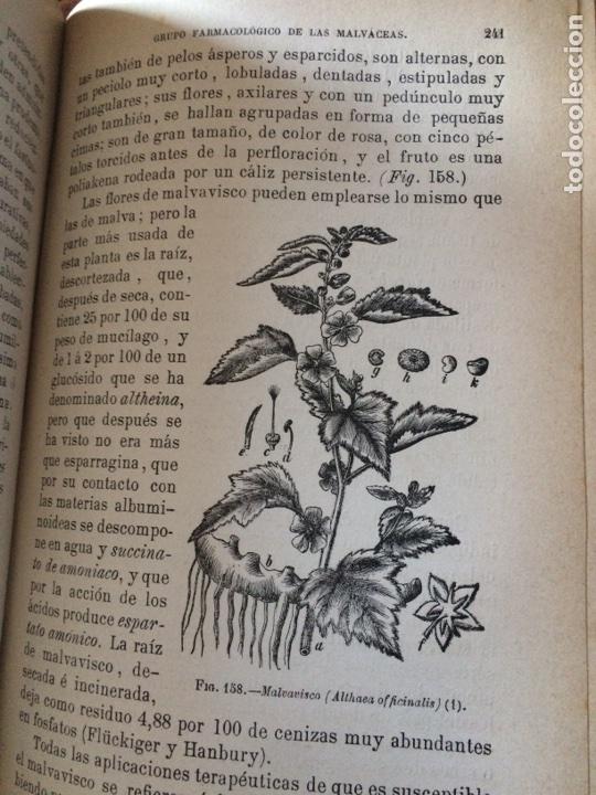 Libros antiguos: Tratado de la materia medica Dr.J.B Fonssagrives - Foto 17 - 92862268