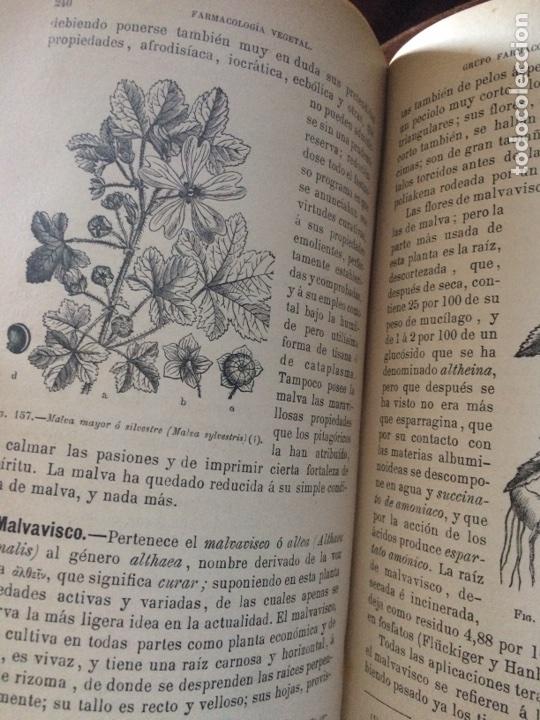 Libros antiguos: Tratado de la materia medica Dr.J.B Fonssagrives - Foto 18 - 92862268