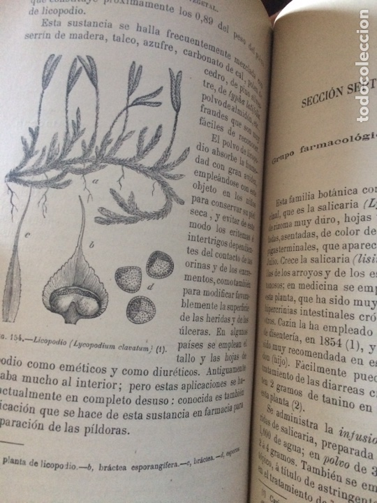 Libros antiguos: Tratado de la materia medica Dr.J.B Fonssagrives - Foto 19 - 92862268