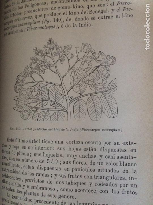 Libros antiguos: Tratado de la materia medica Dr.J.B Fonssagrives - Foto 21 - 92862268