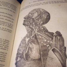 Libros antiguos: TRATADO ELEMENTAL DE ANATOMIA DESCRIPTIVA,DR A.JAMAIN 1874. Lote 98595195