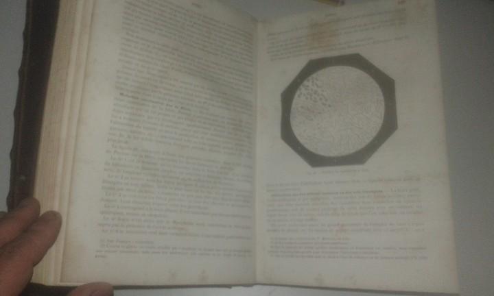 Libros antiguos: Diccionario Farmacia Dictionnaire des ALTERATIONS ET FALSIFICATIONS des substances alimentaires 1882 - Foto 3 - 109368599