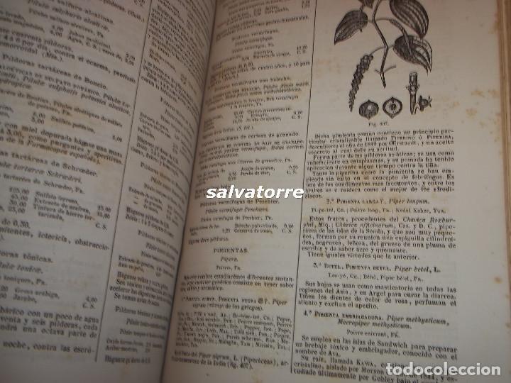 Libros antiguos: DORVAULT.LA BOTICA.FARMACIA.1880.MEDICINA.FORMULAS MAGISTRALES.MATERIALES,HOMEOPATIA. - Foto 12 - 111302987
