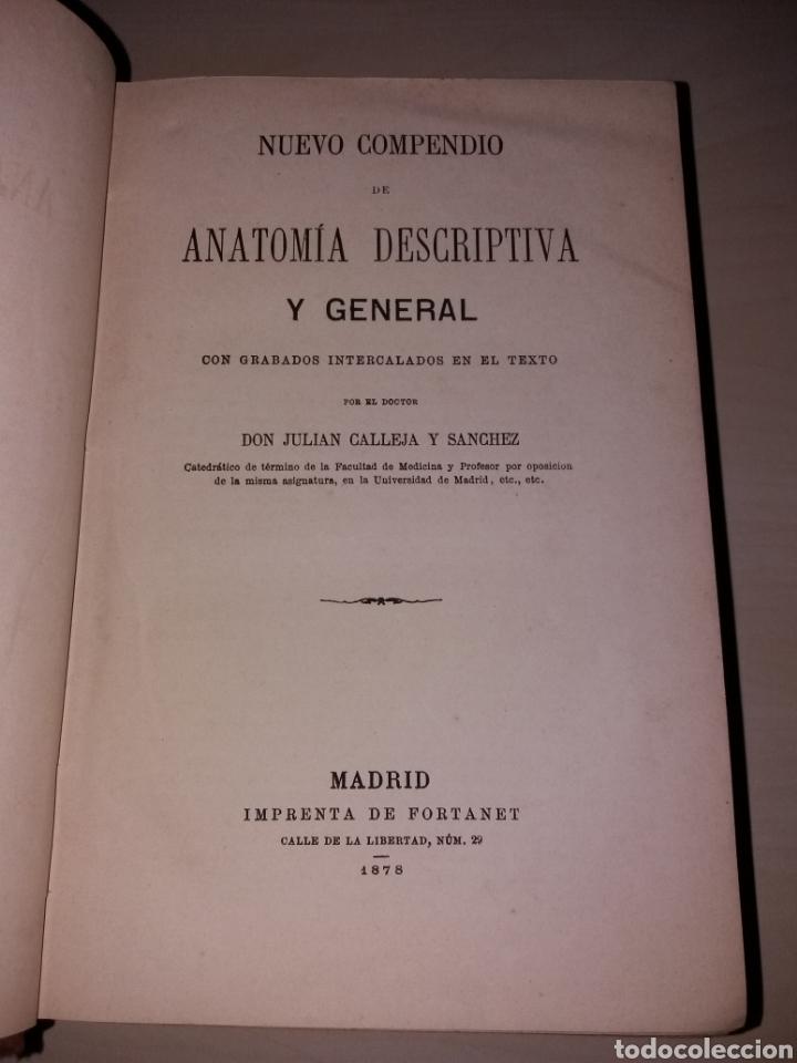 nuevo compendio de anatomía descriptiva y gener - Comprar Libros ...