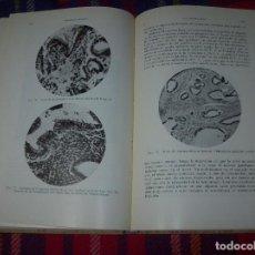 Libros antiguos: LAS HORMONAS SEXUALES FEMENINAS.CICLO GENITAL Y EL LÓBILO ANTERIOR...C. CLAUBERG. ED. LABOR. 1935.. Lote 112208555