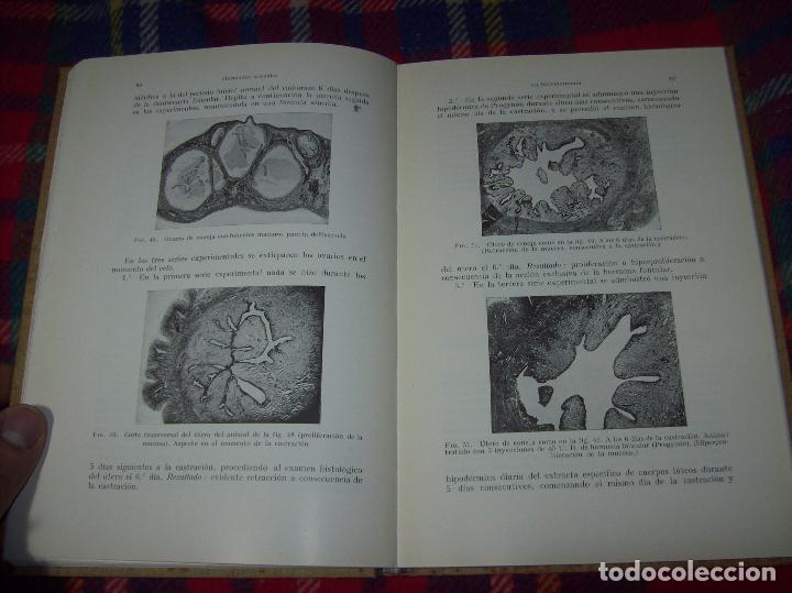 Libros antiguos: LAS HORMONAS SEXUALES FEMENINAS.CICLO GENITAL Y EL LÓBILO ANTERIOR...C. CLAUBERG. ED. LABOR. 1935. - Foto 15 - 112208555