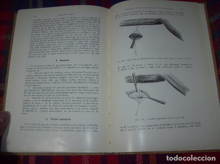 Libros antiguos: LAS HORMONAS SEXUALES FEMENINAS.CICLO GENITAL Y EL LÓBILO ANTERIOR...C. CLAUBERG. ED. LABOR. 1935. - Foto 21 - 112208555
