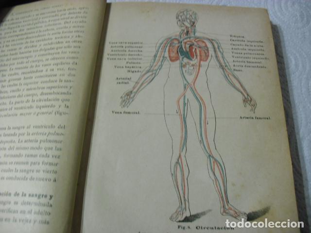 Libros antiguos: MANUAL POPULAR DE HIGIENE REDACTADO POR EL CONSEJO IMPERIAL DE SANIDAD DE ALEMANIA ENTRA Y MIRALO - Foto 5 - 116457071