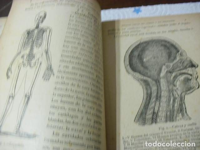 Libros antiguos: MANUAL POPULAR DE HIGIENE REDACTADO POR EL CONSEJO IMPERIAL DE SANIDAD DE ALEMANIA ENTRA Y MIRALO - Foto 6 - 116457071