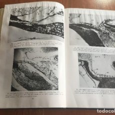 Libros antiguos: LIBRO ADVANCES IN NEUROENDOCRINOLOGY, NALBANDOV, UNIVERSITY OF ILLINOIS PRESS, 1963. Lote 118950367