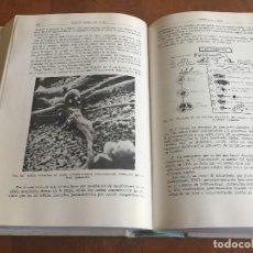 Libros antiguos: LIBROS PATOLOGÍA GENERAL Y FISIOPATOLOGÍA, (COMPLETO), ENRIQUE ROMERO, FIRMADO POR EL AUTOR. Lote 118952643