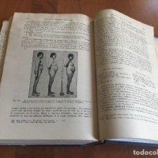 Libros antiguos: LIBRO FISIOLOGÍA NORMAL Y PATOLÓGICA, WIGGERS, ED. ESPASA CALPE, 1949. Lote 118955299