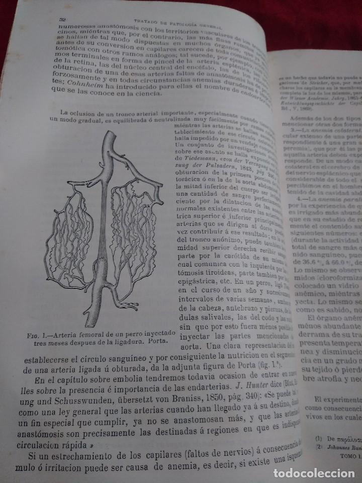 patologia general anatomia y fisiologia patolog - Comprar Libros ...