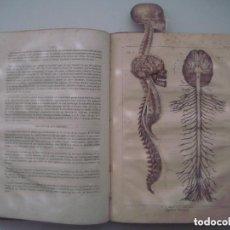 Libros antiguos: EXCEPCIONAL EDICION POP-UP DE ATLAS DEL HOMBRE. 1840. MULTITUD DE GRABADOS. FOLIO. Lote 124582583