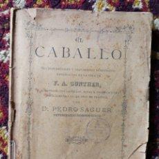 Libros antiguos: EL CABALLO, ENFERMEDADES Y TRATAMIENTOS HOMEOPATICO, F.A.GUNTHER, PEDRO SAGUER (1887).RARO!!!.. Lote 128004867