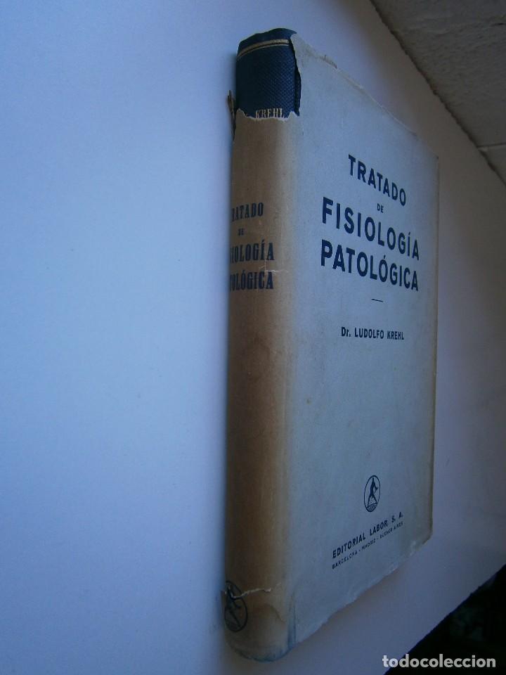 Libros antiguos: Tratado de Fisiologia Patologica Dr Lupoldo Krehl Labor 1923 - Foto 17 - 128898559