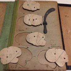 Libros antiguos: DR MUELLER TASCHENPHANTOM. CIRCA 1900 MAQUETA DE PARTOS. ÚNICO. Lote 132524450
