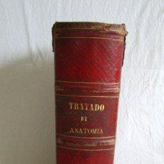Libros antiguos: TRATADO ELEMENTAL DE ANATOMÍA MEDICO-QUIRURGICA. DOCTOR D. JUAN CREUS. 1872.. Lote 132888994