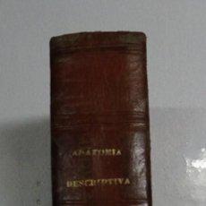 Libros antiguos: JAMAIN: NUEVO TRATADO ELEMENTAL DE ANATOMIA DESCRIPTIVA Y COMPENDIO EMBRIOLOGIA 1862. 200 GRABADOS. Lote 136485282