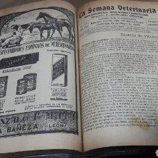Libros antiguos: BOLETÍN LA SEMANA VETERINARIA GORDÓN ORDAS AÑO 1929 COMPLETO. Lote 139036621