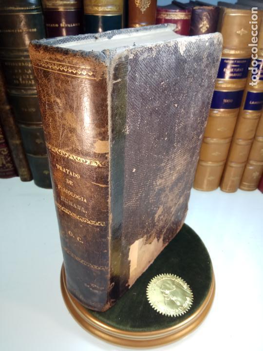 TRATADO DE FISIOLOGÍA HUMANA - J. BECLARD - CARLOS BAILLY-BALLIERE - MADRID - 1860 - (Libros Antiguos, Raros y Curiosos - Ciencias, Manuales y Oficios - Medicina, Farmacia y Salud)