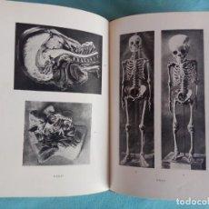 Libros antiguos: EL CUERPO HUMANO - CHRCHRISTIAN CHAMPY - COLECCIÓN LABOR 1931. Lote 145054982