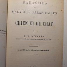 Libros antiguos: PARASITES ET MALADIES PARASITAIRES DU CHIEN ET DU CHAT. Lote 148462006
