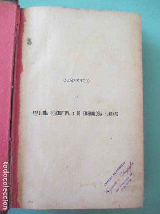 Libros antiguos: COMPENDIO DE ANATOMÍA DESCRIPTIVA EMBRIOLOGÍA HUMANAS. TOMO I. 4ª EDICIÓN. 1901. JULIAN CALLEJA - Foto 2 - 148646866