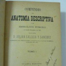 Libros antiguos: COMPENDIO DE ANATOMÍA DESCRIPTIVA Y DE EMBRIOLOGÍA HUMANAS TOMO I. AÑO 1901. Lote 151100334