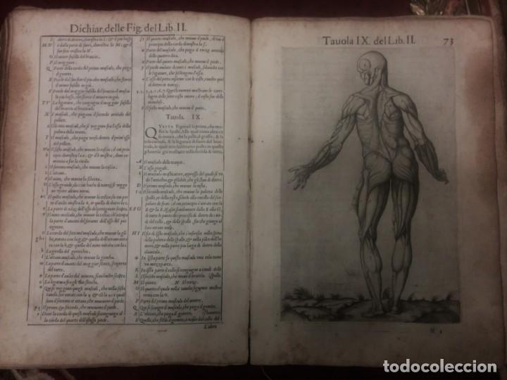 Libros antiguos: ANATOMÍA DEL CUERPO HUMANO, DE VALVERDE DE AMUSCO AÑO 1560.Siglo XVI - Foto 5 - 152441030