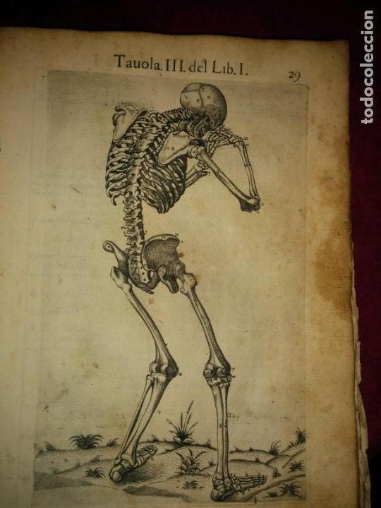 Libros antiguos: ANATOMÍA DEL CUERPO HUMANO, DE VALVERDE DE AMUSCO AÑO 1560.Siglo XVI - Foto 4 - 152441030