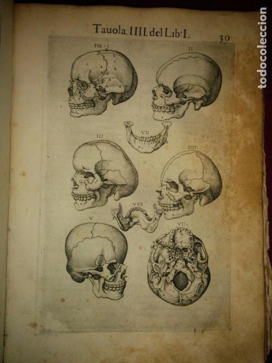 Libros antiguos: ANATOMÍA DEL CUERPO HUMANO, DE VALVERDE DE AMUSCO AÑO 1560.Siglo XVI - Foto 9 - 152441030
