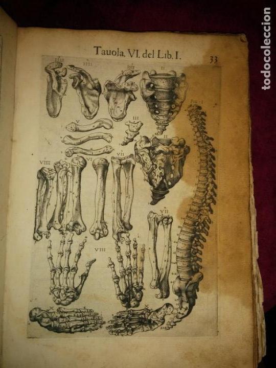 Libros antiguos: ANATOMÍA DEL CUERPO HUMANO, DE VALVERDE DE AMUSCO AÑO 1560.Siglo XVI - Foto 6 - 152441030