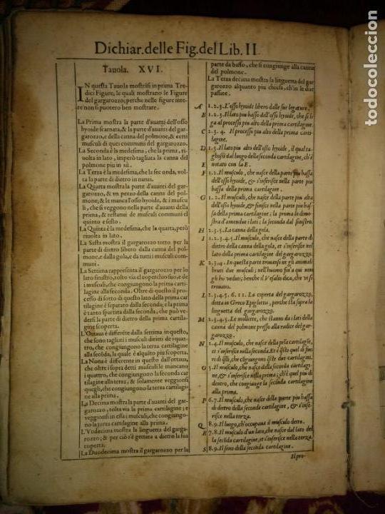 Libros antiguos: ANATOMÍA DEL CUERPO HUMANO, DE VALVERDE DE AMUSCO AÑO 1560.Siglo XVI - Foto 10 - 152441030