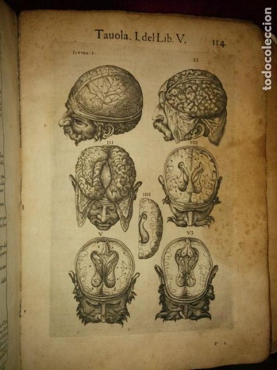 Libros antiguos: ANATOMÍA DEL CUERPO HUMANO, DE VALVERDE DE AMUSCO AÑO 1560.Siglo XVI - Foto 13 - 152441030