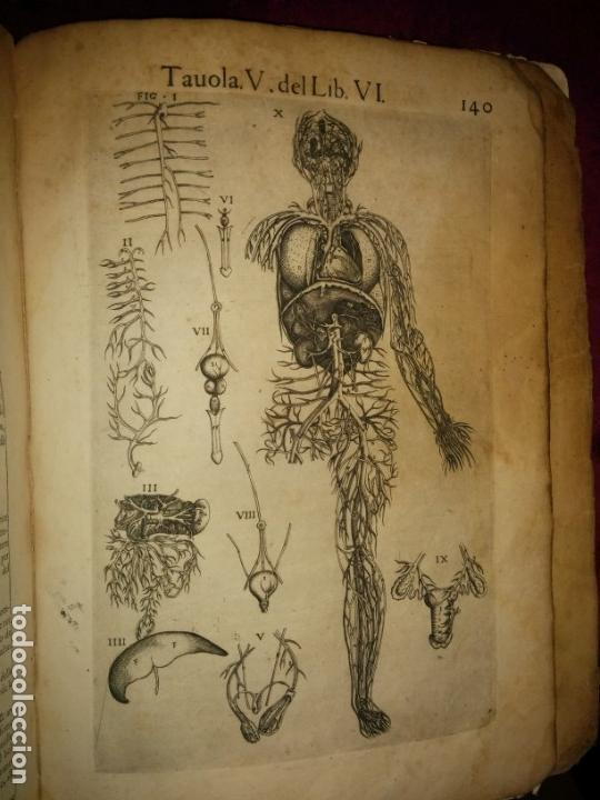 Libros antiguos: ANATOMÍA DEL CUERPO HUMANO, DE VALVERDE DE AMUSCO AÑO 1560.Siglo XVI - Foto 14 - 152441030