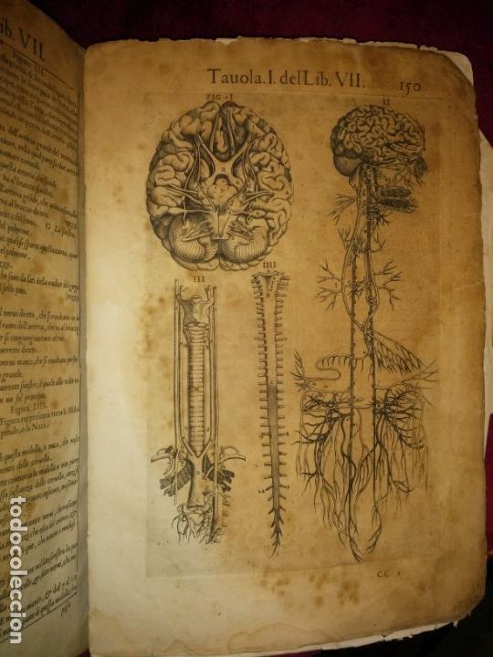 Libros antiguos: ANATOMÍA DEL CUERPO HUMANO, DE VALVERDE DE AMUSCO AÑO 1560.Siglo XVI - Foto 15 - 152441030