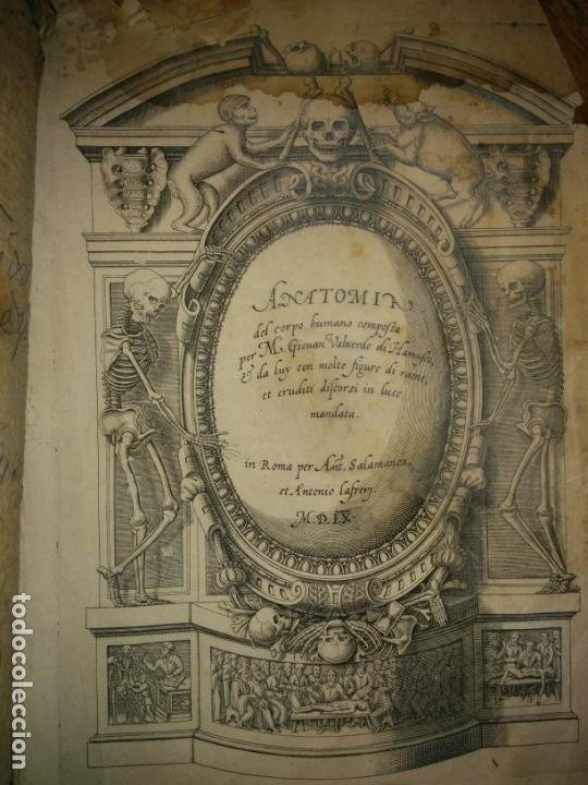 ANATOMÍA DEL CUERPO HUMANO, DE VALVERDE DE AMUSCO AÑO 1560.SIGLO XVI (Libros Antiguos, Raros y Curiosos - Ciencias, Manuales y Oficios - Medicina, Farmacia y Salud)