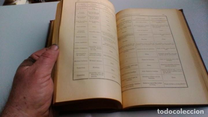 Libros antiguos: MANUAL TOXICOLOGÍA - G DRAGENDORFF - ED CARLOS BAILLY BAILLIERE 1888 - Foto 13 - 160641622