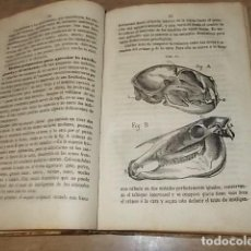 Libros antiguos: ELEMENTOS DE FISIOLOGIA COMPARADA DE LOS ANIMALES DOMÉSTICOS. NICOLÁS CASAS. 1869. UNA JOYA!!!!. Lote 162851586