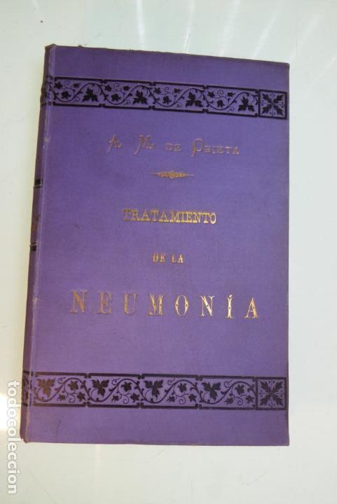 Libros antiguos: Tratamiento de la neumonía. A. M. De Obieta. Imprenta y litografía de Juan E. Delmas. Bilbao. 1893. - Foto 2 - 167832884