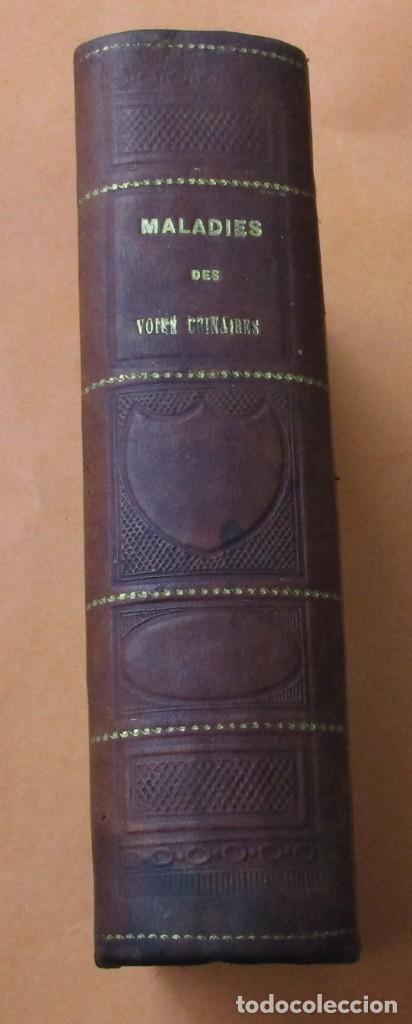 Libros antiguos: VOIES URINAIRES ET ORGANES GÉNÉRATEURS. EM. JOZAM. PARIS 1856. HOLANDESA. 779 PÁGINAS.18,5 X 12,5 CM - Foto 2 - 168664160