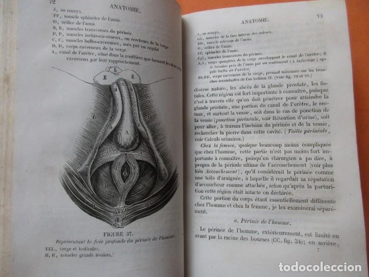 Libros antiguos: VOIES URINAIRES ET ORGANES GÉNÉRATEURS. EM. JOZAM. PARIS 1856. HOLANDESA. 779 PÁGINAS.18,5 X 12,5 CM - Foto 5 - 168664160